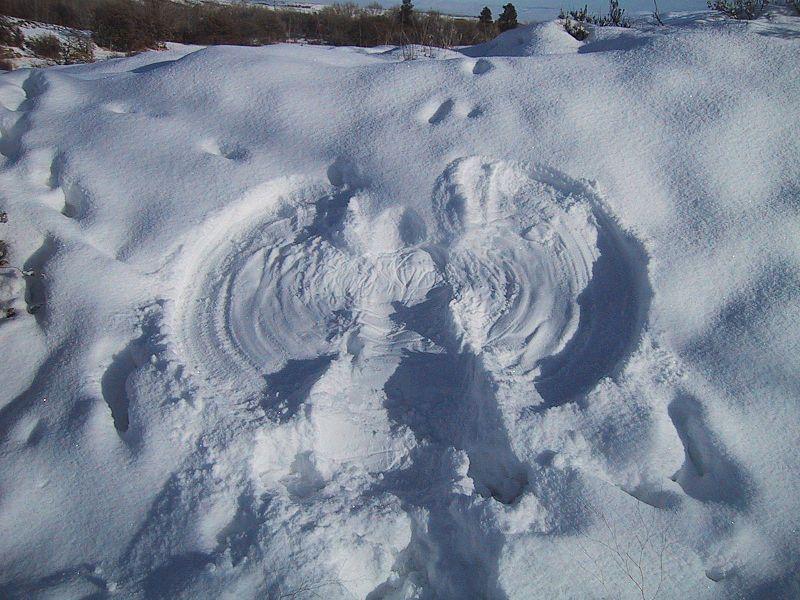 Snow_angel (1)